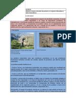03 - Manejo y Conservacion de Praderas