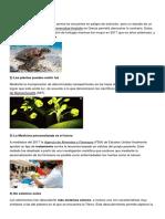 5 Investigaciones Científicas y Tecnologicas
