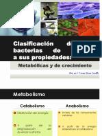 Bacterias edited by Horus