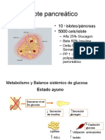 2. Diabetes - Fisiopatologia diabetes.ppt