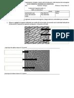 Evaluación 2do forma B.docx