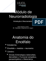 introduçao a neuroanatomia.pptx