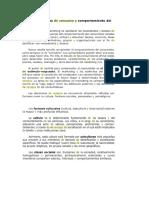 El Proceso de Compra del Consumidor.docx