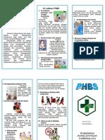 LEAFLET PHBS 10 indikasi.docx