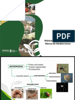 Capacitación a Docentes -  biología.pptx