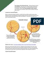 Cara Menyembuhkan Tumor Dengan Obat Racikan Herbal