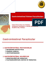 Gastrointestinal Parazitozlar