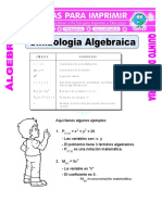 Simbologia-Algebraica-para-Quinto-de-Primaria.doc