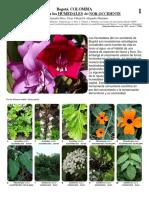 817_plantas_de_los_humedales.pdf