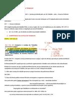 AULA 1 DE 7 - PROCESSO DO TRABALHO.docx