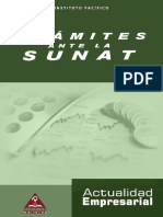 lv2012_tramite_sunat.pdf