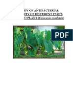 STUDY OF ANTIBACTERIAL ACTIVITY OF DIFFERENT PARTS OF TARO PLANT.docx