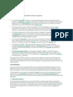 Funciones y Actividades Dentro de Una Empresa