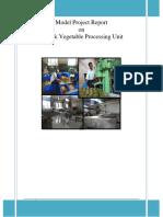 Medium Fruit and Vegetable Processing Unit 260814