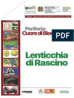 01 lenticchie rascino 01-08