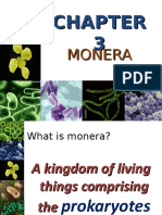 Chapt. 3 - Monera