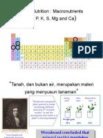 Lecture 3 Plant Nutrition 100129 ppt.ppt