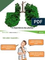 Importancia Das Plantas
