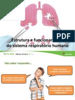 U6 Estrutura Funcionamento Sistema Respiratorio Humano Final