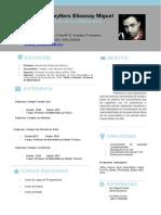 Modelo Resumen Curricular New