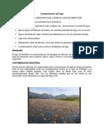 Contaminación del lago