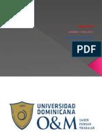 Yorgenis Del Rosario Mambru 17-MIST-1-028