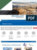 Presentacion Mineria 2019 Avigilon