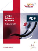 Ovarian Cancer Surgery Spanish