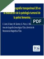 Valor de la ecografía transperineal 3D en la evaluación de la patología tumoral de la pelvis femenina.pdf