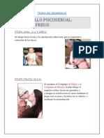 desRROLLO PSICOSEXUAL 2_5AÑOS.docx