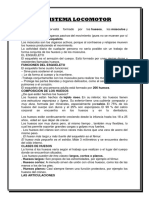EL SISTEMA LOCOMOTOR.docx