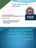 VIII-PLENO.pptx