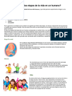 7 etapas de la vida.docx