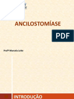 Ancilostomíase (2)