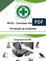 Cipa -Slides - Consulta