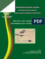 Practicas de Lab Micro Veteribaria.pdf