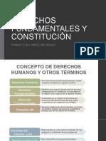 Derechos Fundamentales y Constitución Convertido