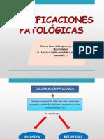 CALCIFICACIÓN .docx