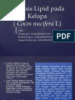 Analisis Lipid Pada Kelapa