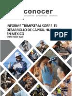 Informe_Trimestral_sobre_Desarrollo_Capital_Humano_Mex2018.pdf