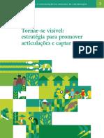 caderno-5_Tornar-se-visível-estratégia-para-promover-articulações-e-captar-recursos.pdf