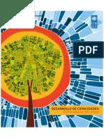 DesarrolloDeCapacidadesPNUD.pdf