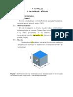 CAP 2 - METODOLOGÍA.docx