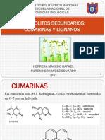 Presentación Fitoquimica.pptx