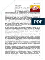 CASO_SOFIA_e.e._Autoguardado.docx