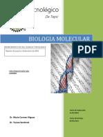 AISLAMIENTO DE DNA.docx