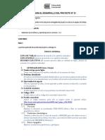 01 FEPI TFA GuíaProyecto P1 Rev1