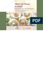 What cut flower is that-The essential care and handling guide for cut flower professionals.pdf