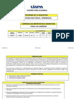 PROGRAMA DE INFOTECNOLOGIA-actualizado .pdf