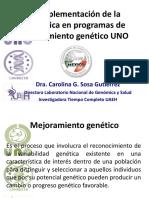 La Implementación de La Genómica en Programas de Mejoramiento Genético UNO